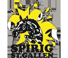 logo spirig